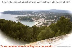 Boeddhisme verandert de wereld niet